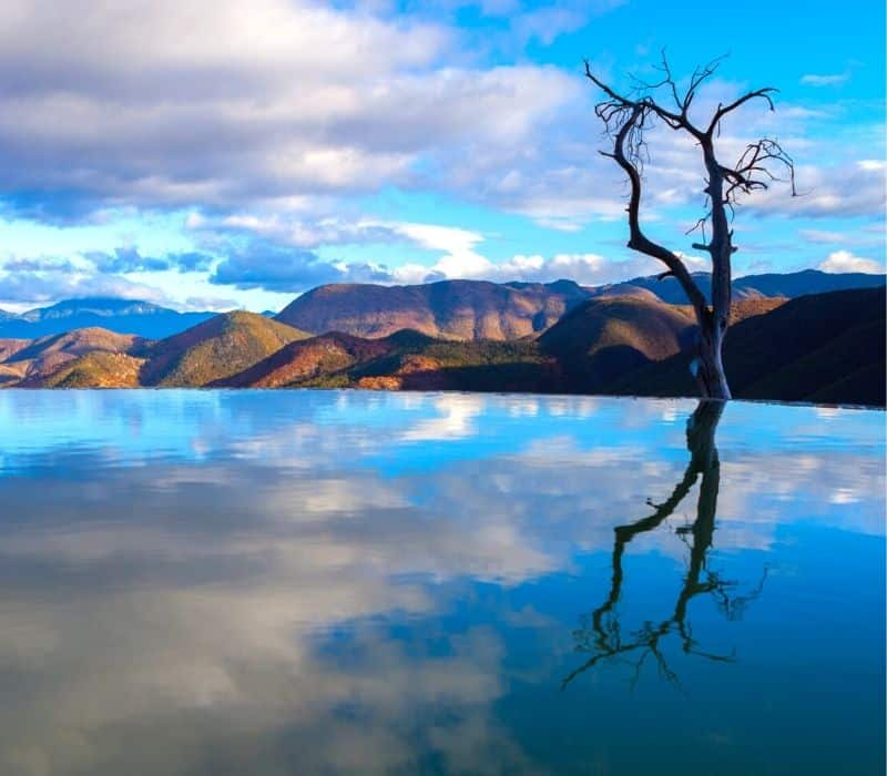 Water and a tree on a cliff at Hierve el Agua in Oaxaca City
