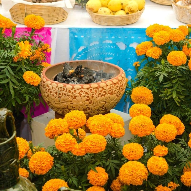 altar with marigold flowers and incense burning in a carved bowl | oaxaca day of the dead in mexico