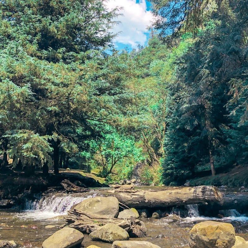 Los Dinamos natural area