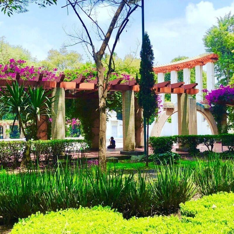 Lush green park Parque Mexico in La Condesa neighborhood | 4 day mexico city itinerary