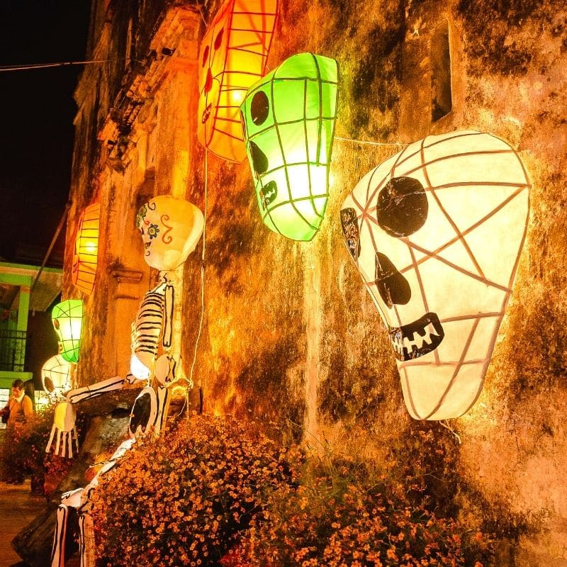 glowing skulls in different colors on a wall | oaxaca day of the dead in mexico