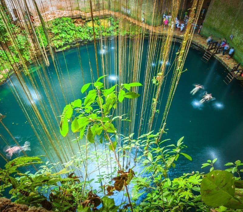 cenote ik-kil with blue water and vine going into the water