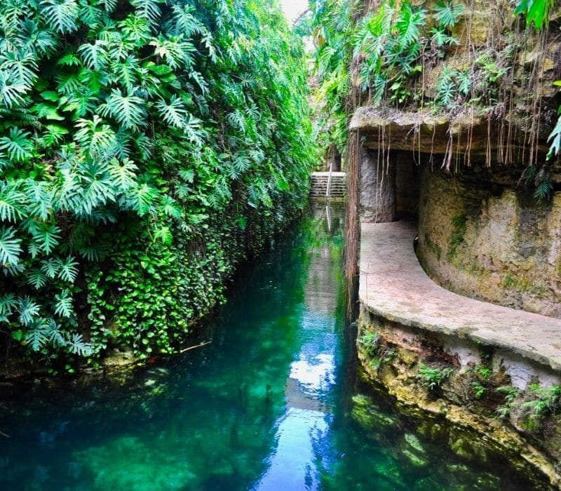 natural swimming pool in Cenotes Hacienda Mucuyche, near Merida, Mexico, Yucatan Peninsula