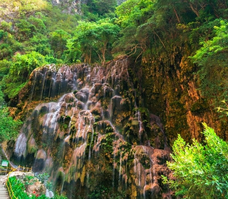 small waterfall in a forest - Visit Las Grutas Tolantongo