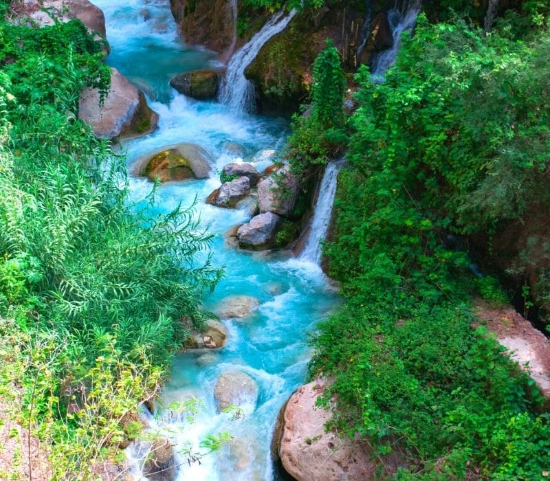 waterfalls and bright blue waters in a forest - Visit Las Grutas Tolantongo