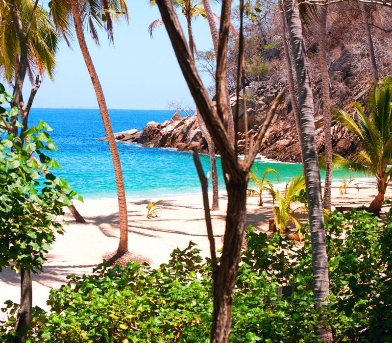 majahuitas, mexico tropical beach cove with blue waters and palm trees | things to do in puerto vallarta mexico