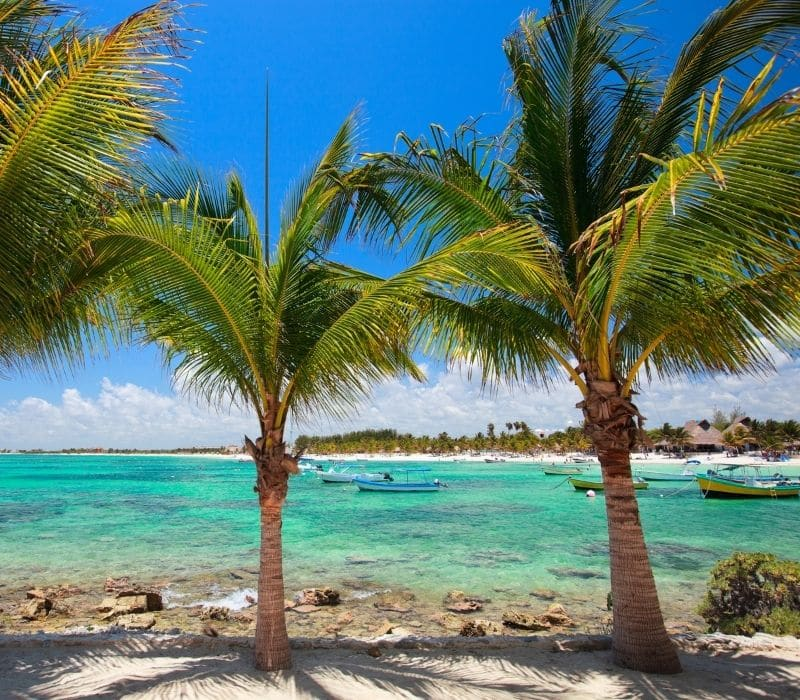palm trees and blue water with coral rocks and reefs in it and a few fishing boats on the beach in Akumal, one of the Best Mexican Beach Towns