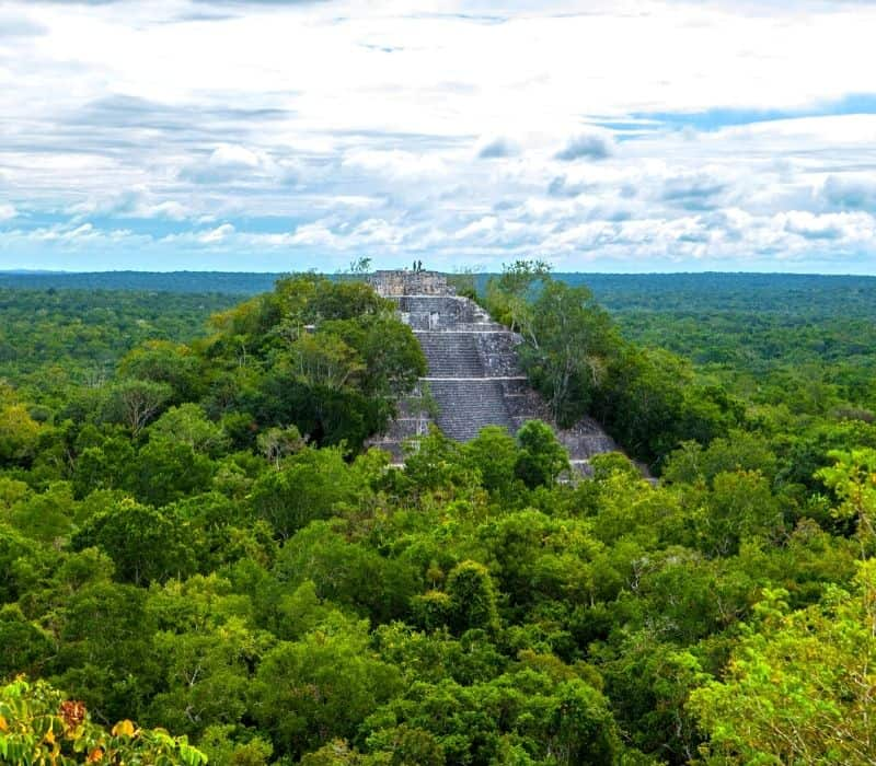 large mayan pyramid in the verdent green jungles the yucatan peninsula in mexico called Calakmul Ruins, one of the most unique places to visit in mexico