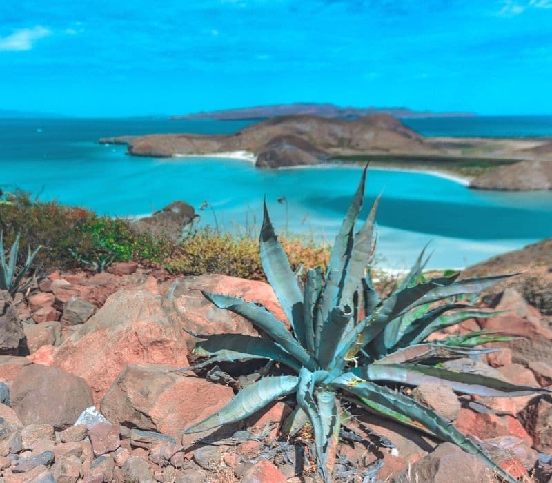 the beautiful blue water and mountains along Blandera Beach in La Paz, one of the Best Mexican Beach Towns | safest cities in mexico to visit
