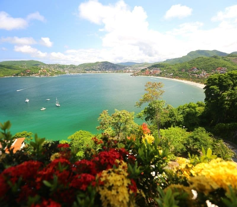 flowers in the foreground and a beautiful horseshoe shaped bay with a few sailboats in the background, in Zihuatanejo, one of the Best Mexican Beach Towns